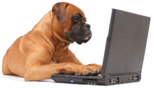 dogandcomputer1